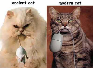 Ancientmoderncat