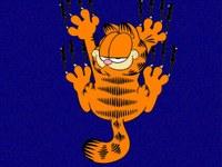 Garfield_01_1