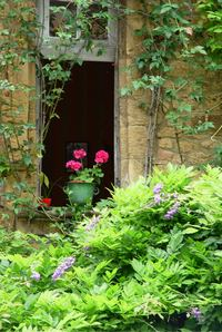 Sarlat_window_sill